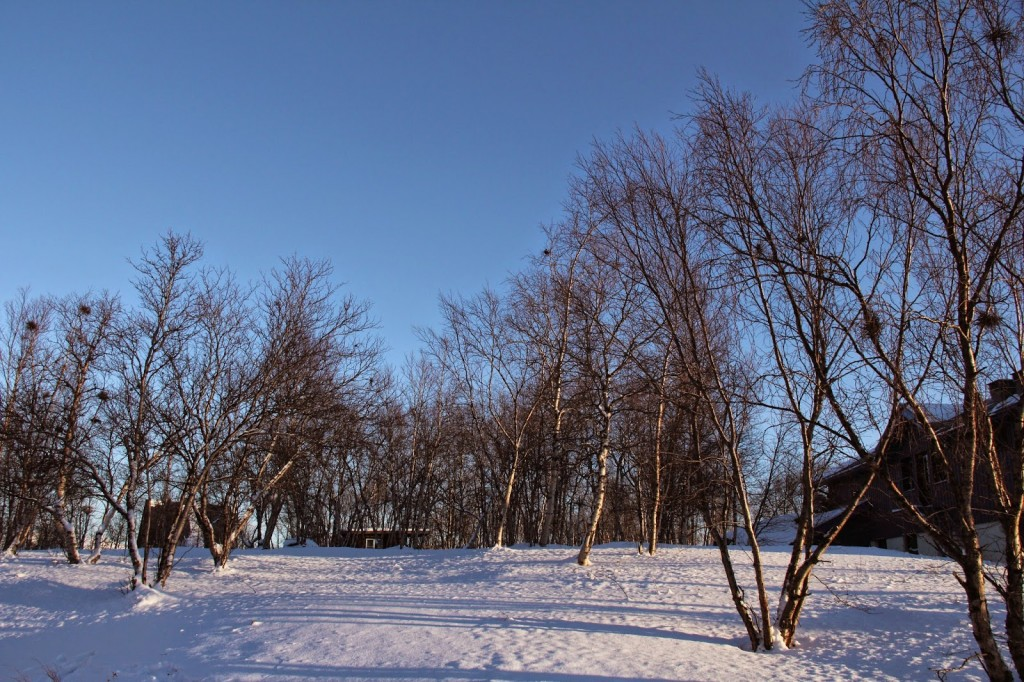 Landscape of the Arcitic on a cold winter morning