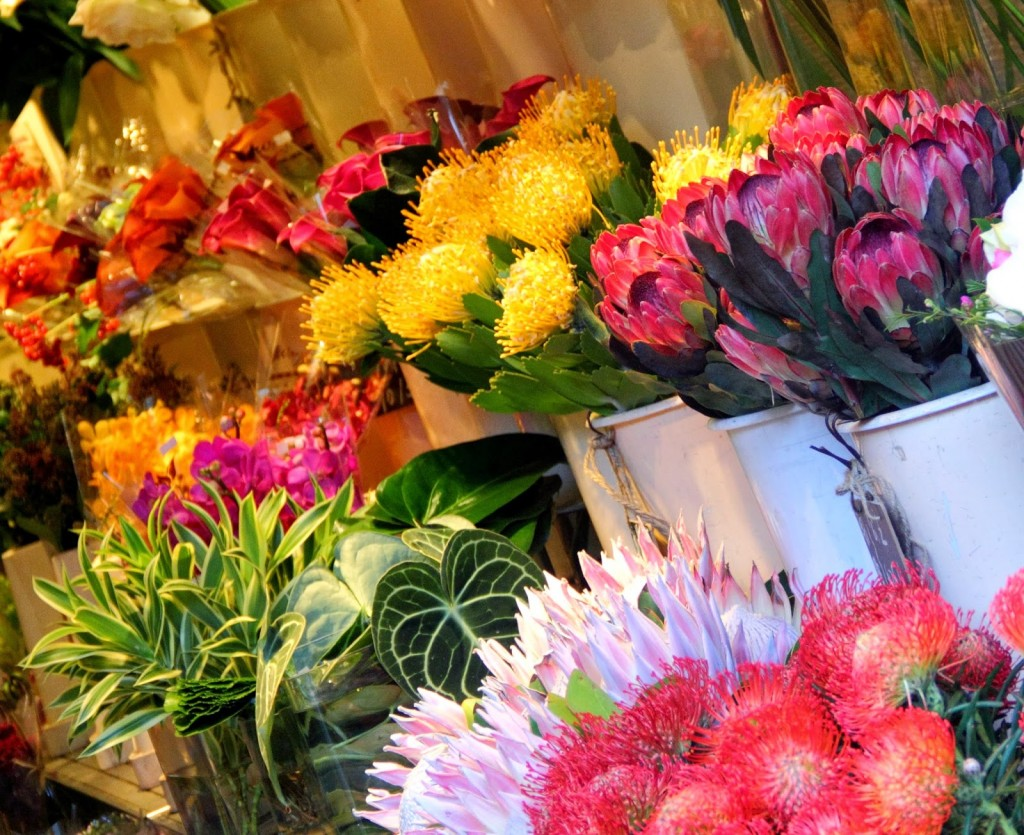 Hong Kong: Flower Market at Mongkok