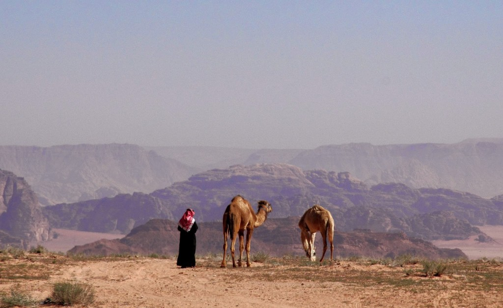 Wadi Rum: Bedouin and his camels
