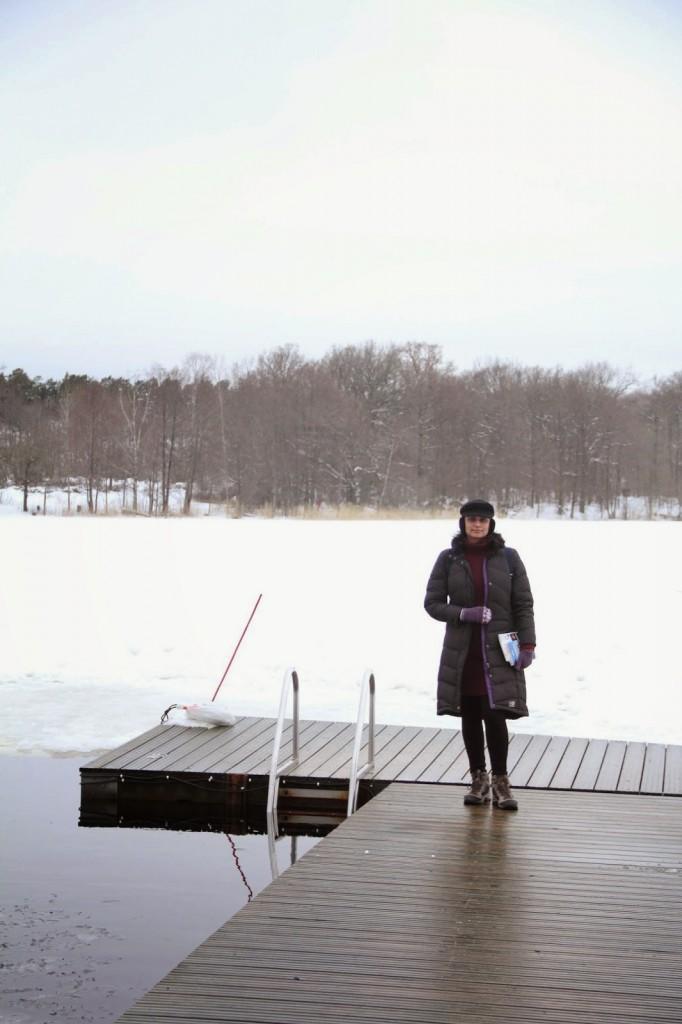 Stockholm: Frozen lake at Hella's Garden