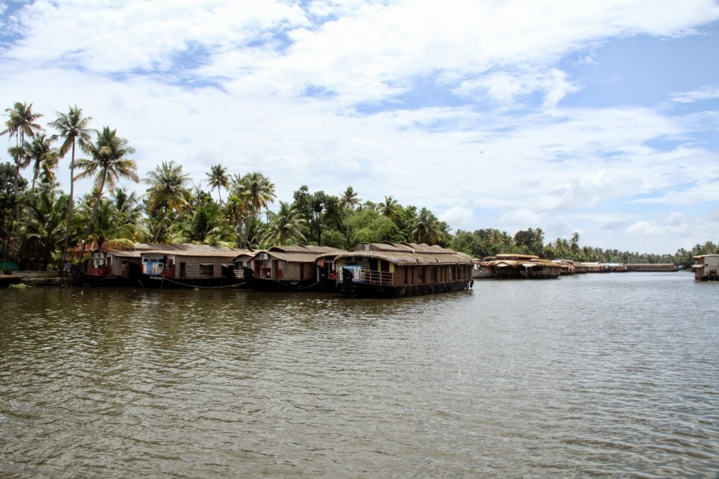 Alleppey: Plenty of house boats!