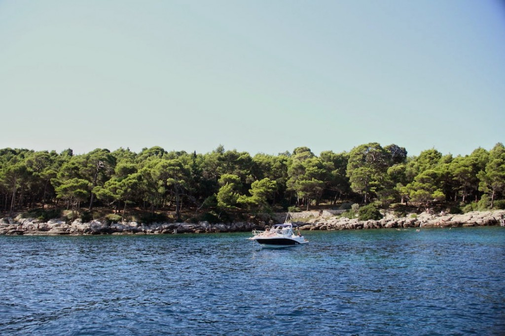 Lokrum Island: Rocky beaches