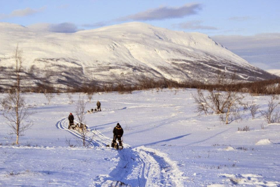 A crisp winter day at Abisko National Park