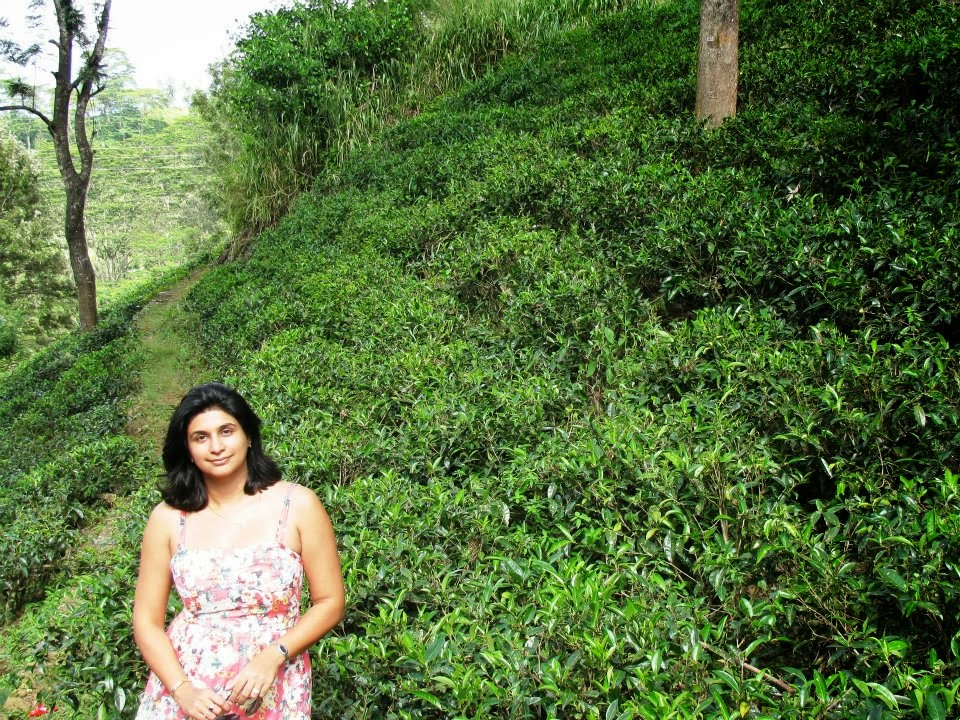 Posing silly in the tea gardens around Kandy