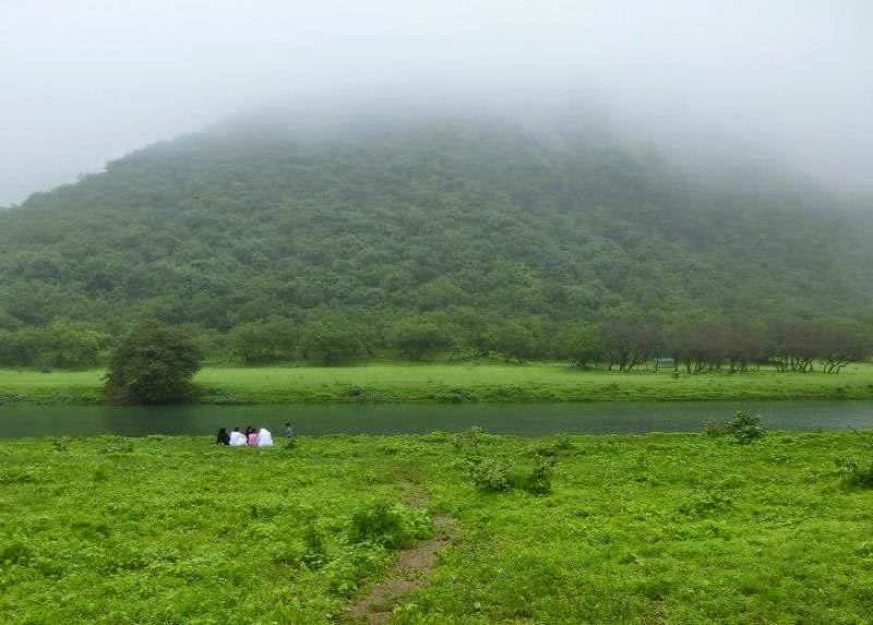Greenery all around - Salalah during the monsoon months
