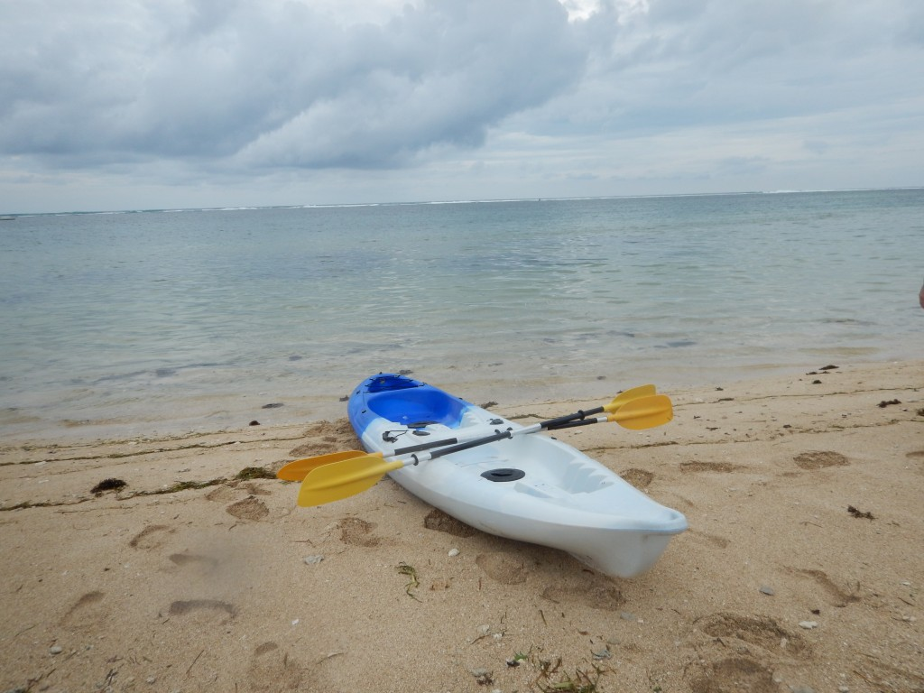 The beach and the kayak... just for us!