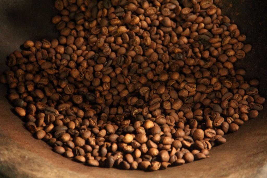 Kopi Luwak - Raosted coffee beans