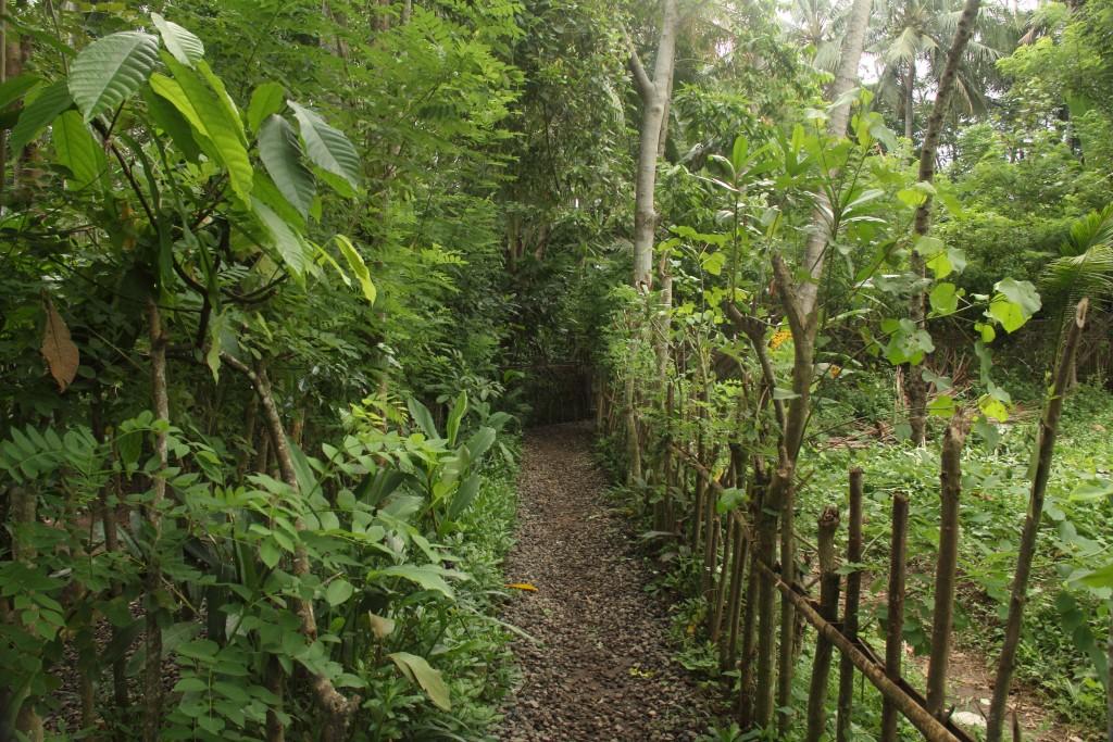 Teba Sari Spice Garden in Ubud