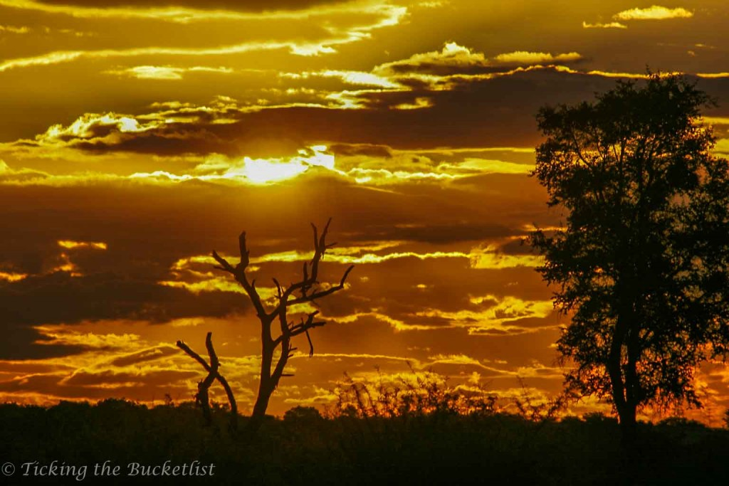 Sunset at Kruger National Park (South Africa)