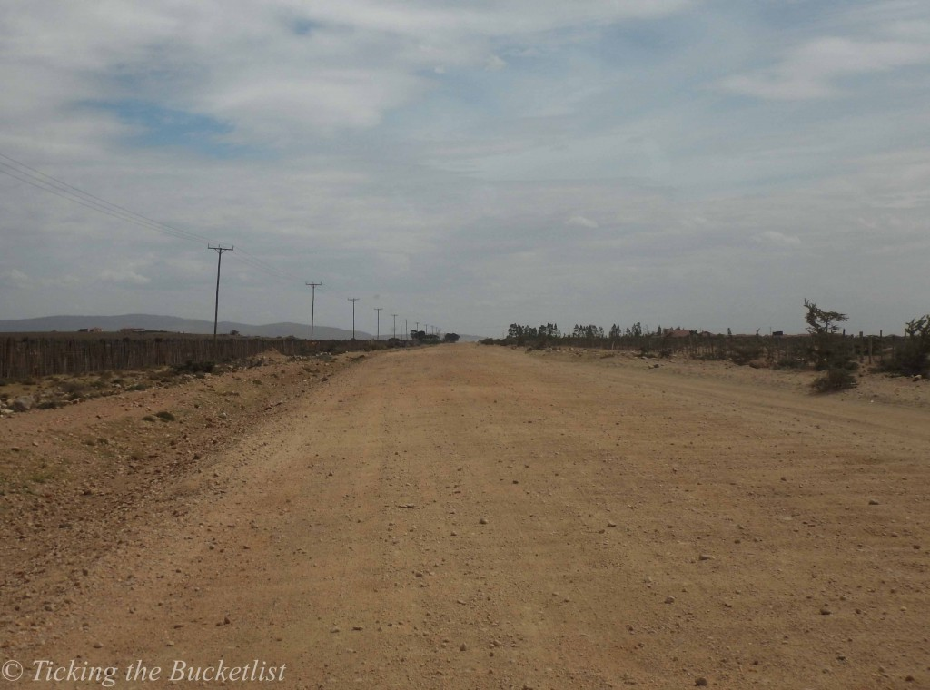'Roads' in Masai Mara, Kenya